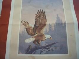 Eagle Stamped Cross Stitch Kit - $15.00