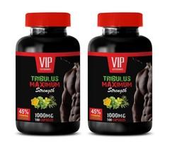 testosterone booster enhancement - TRIBULUS MAXIMUM 2B 200CAPS - tribulus root - $26.14