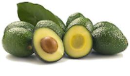 2 Organic Avocado Seeds, Non-GMO, Variety: Hass image 3