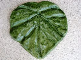 "18"" Tropical Garden Leaf Stepping Stone Mold - Make Them For About $1.00 EACH. image 2"