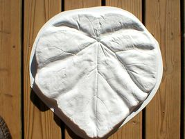 "18"" Tropical Garden Leaf Stepping Stone Mold - Make Them For About $1.00 EACH. image 5"