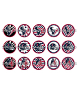 "NFL Houston Texans 1"" Bottle Cap Image Sheet (4... - $2.00"