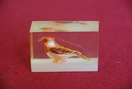 Bird Cast Acrylic Resin Cube - Orange - $15.00