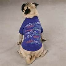 Zack & Zoey Cotton Halloween to Doo List purple Dog Tee shirt costume si... - $9.99