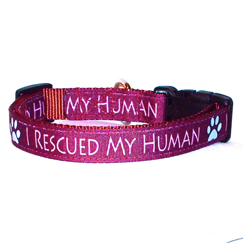 I Rescued My Human Burgundy Handmade Dog Collar 1 inch Wide Size Large  image 2