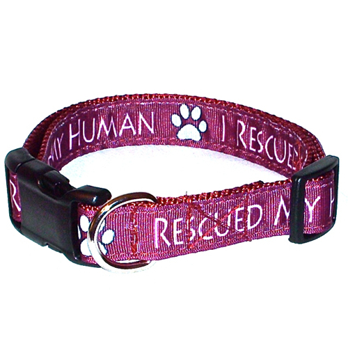 I Rescued My Human Burgundy Handmade Dog Collar 1 inch Wide Size Large  image 3