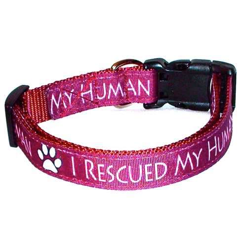 I Rescued My Human Burgundy Handmade Dog Collar 1 inch Wide Size Large  image 5
