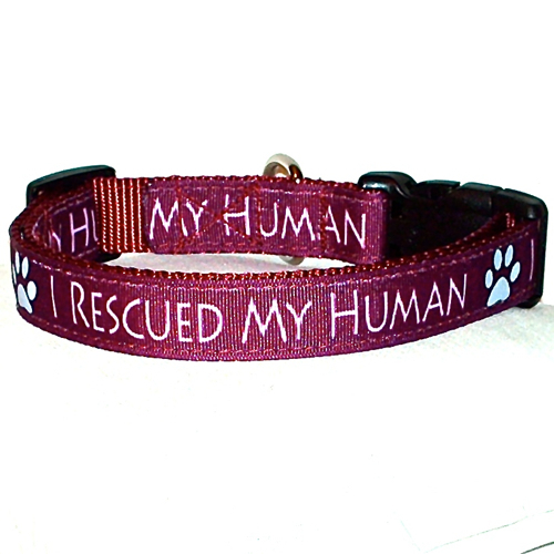 I Rescued My Human Burgundy Handmade Dog Collar 1 inch Wide Size Large