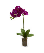 24 Orchid Phalaenopsis Artificial Arrangement in Vase - $36.99