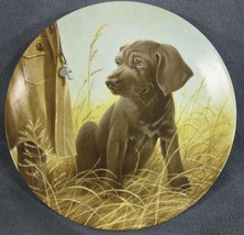 Command Performance The Weimaraner Collector Plate Field Puppies Lynn Ka... - $19.95