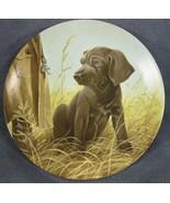 Command Performance The Weimaraner Collector Plate Field Puppies Lynn Ka... - $19.95