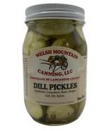 CLASSIC DILL PICKLES -  100% Natural NO SUGAR 1-12 16 oz Jars Amish Home... - $5.91+