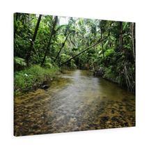Canvas Gallery Wraps - US Made - CG Pro Prints in 2 days - Rio Sabana - ... - $17.00+