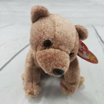 "Beanie Babies Pecan Bear TY 1999 Plush Toy Stuffed Animal 6"" Used With Tags  - $19.79"