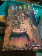 the witch polar lights model brand new - $47.99