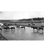 Horses crossing the river at Round-up Camp by L.A. Huffman - Art Print - $19.99+
