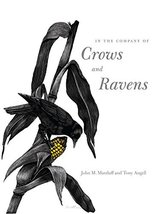 In the Company of Crows and Ravens [Paperback] John M. Marzluff; Tony An... - $7.23