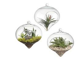 Pack of 3 Glass Hanging Planter Hanging Air Plant Terrarium Decorative H... - $13.81