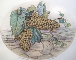 Dorothy Lundquist Grapes- Chardonnay on stone wall Oval etching S/N #40 ... - $19.79