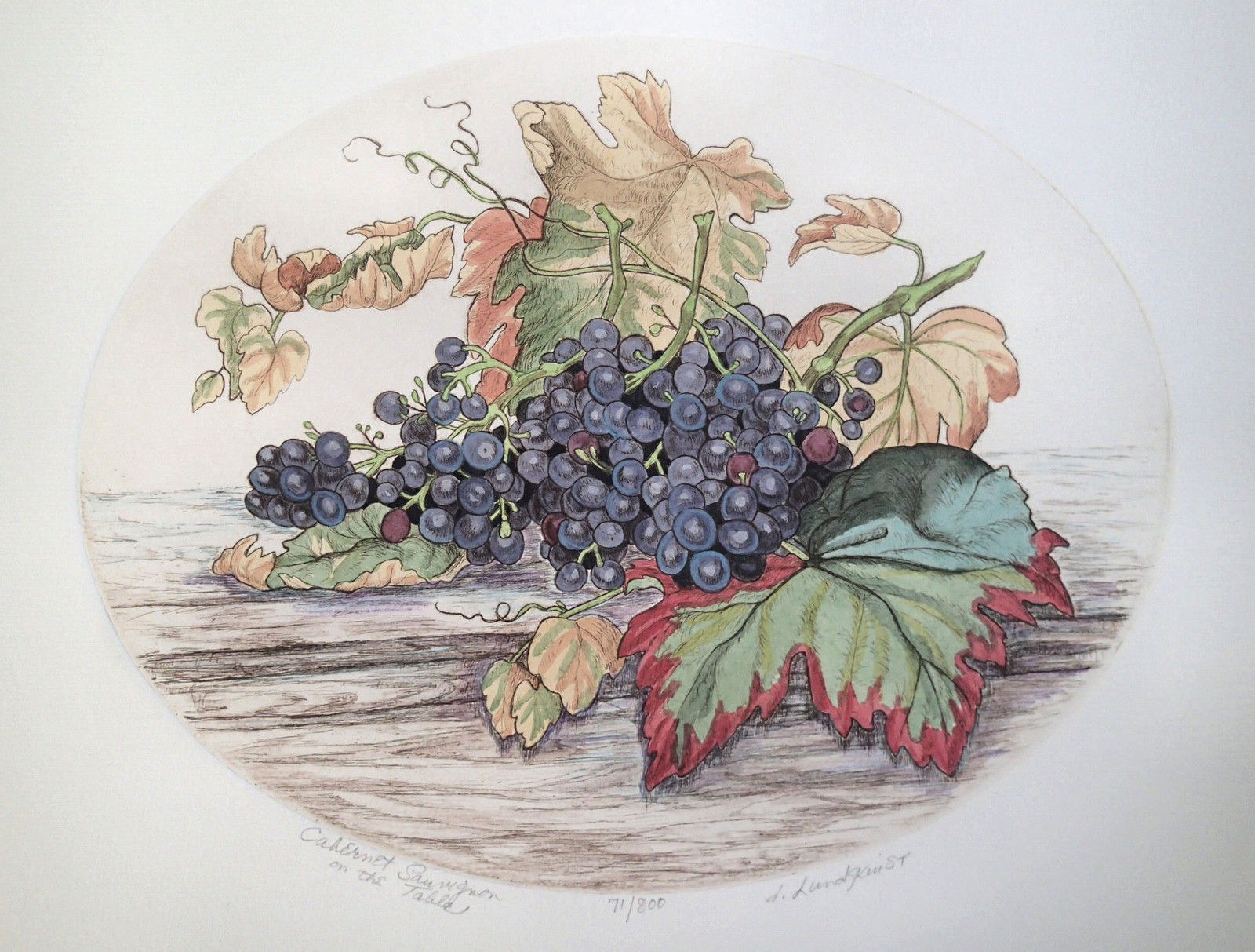 Dorothy Lundquist Cabernet Sauvignonon grapes on wood table Oval etching S/N #71