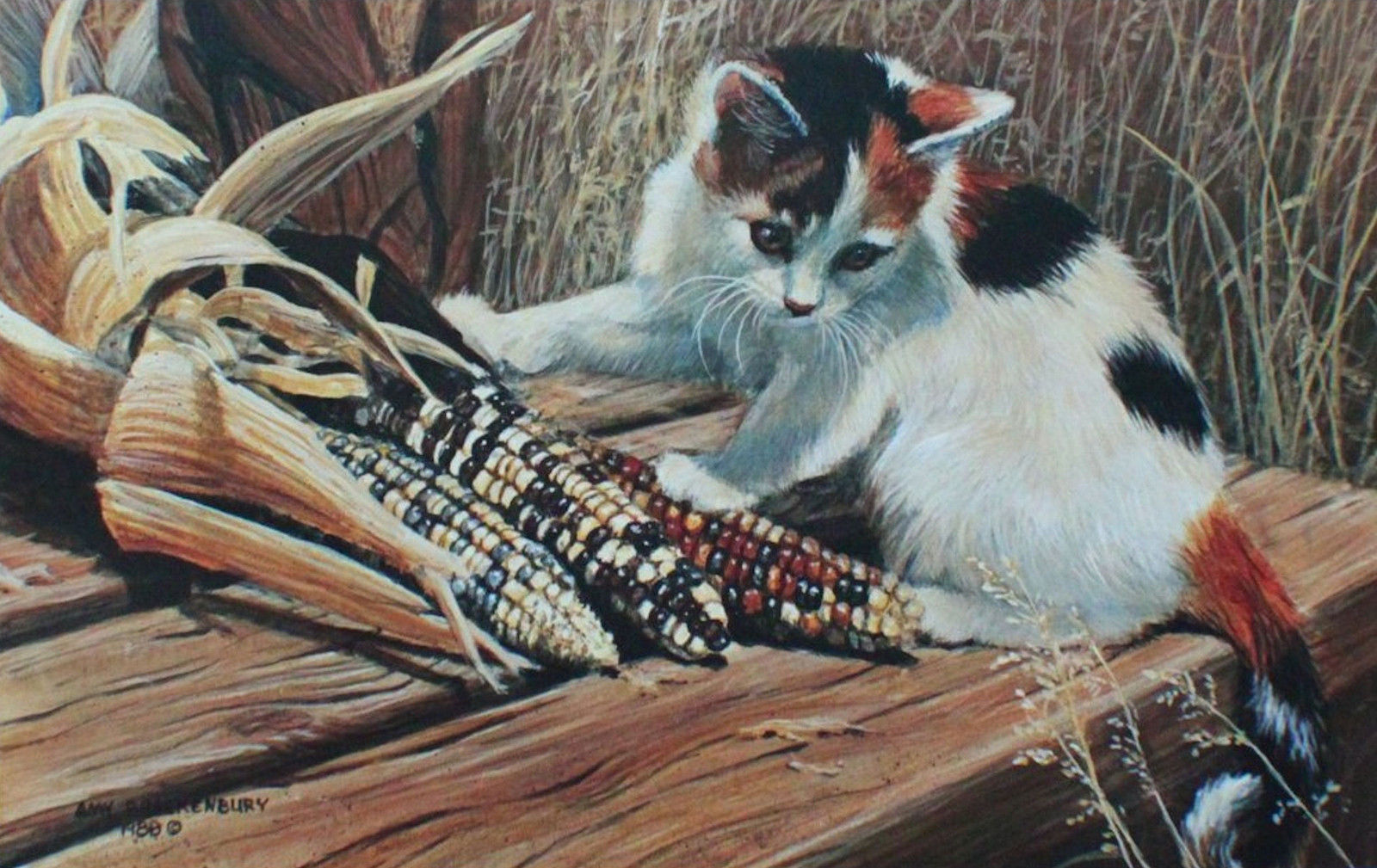"Amy Brackenbury "" Cat In A Maze"" Calico Kitten playing with Maze Corn #45/950"