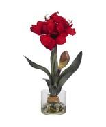 Amaryllis w/Round Vase - $51.28