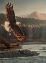 Nancy Glazier The Fisherman LTD ED Bald Eagle flying over Mountain Strea... - $188.09