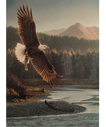 Nancy Glazier The Fisherman LTD ED Bald Eagle flying over Mountain Strea... - $188.09