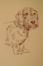 Wirehaired Dachshund Dog Art Print #45 Stephen Kline adds dogs name free. GIFT - $49.95