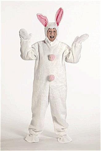 Shop Mascots Online  Fantasy Costumes Chicago