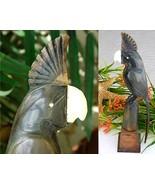 Vintage Hand Carved Horn Cockatoo Bird Figurine... - $42.95
