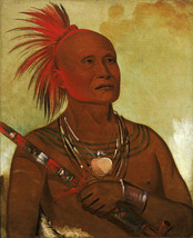 The Swimmer 30x44 George Catlin Native American Indian Art - $99.98