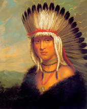 The Pawnee Brave 30x44 George Catlin Native American Indian Art - $99.98
