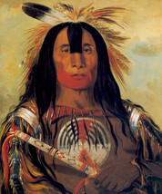 White Buffalo Blackfeet Indian 30x44 George Catlin Native American Indian Art - $99.98