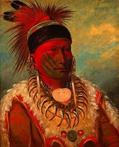White Cloud 22x30 Hand Numbered Edition Catlin Native American Indian Art  - $64.33