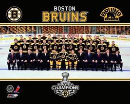 Boston Bruins 2011 Champs Team Vintage 11X14 Color Hockey Memorabilia Photo - $14.95