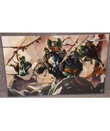 TMNT vs The Predator Glossy Print 11 x 17 In Hard Plastic Sleeve - $24.99