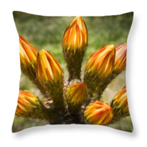 Buds Bouquet, Throw Pillow, seat cushion, fine art, home decor, flowers - $41.99+