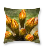 Buds Bouquet, Throw Pillow, seat cushion, fine ... - $41.99 - $69.99