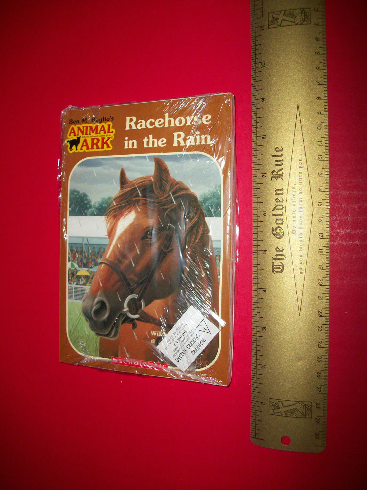 Primary image for Scholastic Fiction Book Set Racehorse In The Rain Novel Jewelry Pendant Necklace