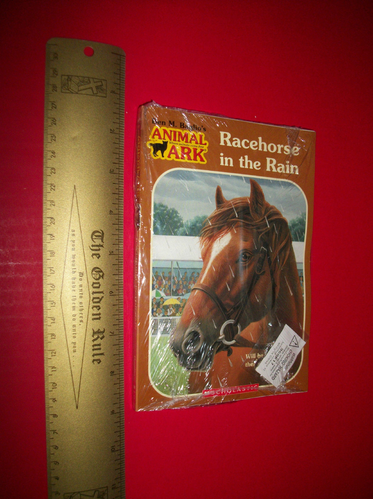 Scholastic Fiction Book Set Racehorse In The Rain Novel Jewelry Pendant Necklace