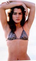 Brooke Shields BS MM Vintage 11X14 Color Movie Memorabilia Photo - $13.95