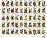 Bird_stamps_1_thumb155_crop