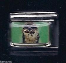 Owl  Wholesale Italian Charm 9 Mm K12 - $7.16