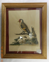 Quilted Red Head Woodpecker Framed Art Picture Vintage Handcrafted - $38.37