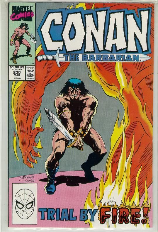 CONAN the BARBARIAN #230 NM!