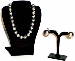 Napier Brushed Silvertone Necklace &  Earrings - $9.95
