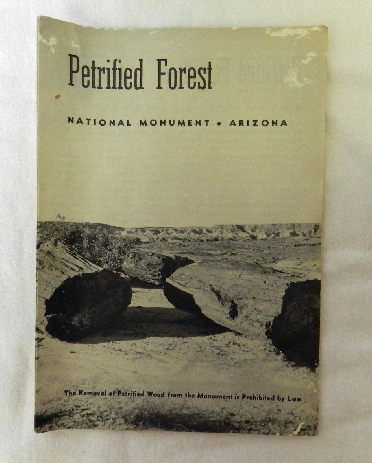 Primary image for Vintage Petrified Forest National Monument Arizona Souvenir Brochure Map 1959