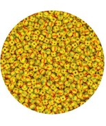 Czech Glass Seed Beads Size 10/0 Yellow Green Red Stripe - $9.97