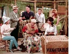 Gilligan's Island B Wells Louise Vintage 11X14 Color Comedy TV Memorabil... - $12.95
